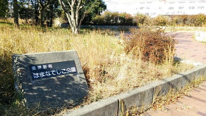 築港新町はまなでしこ公園