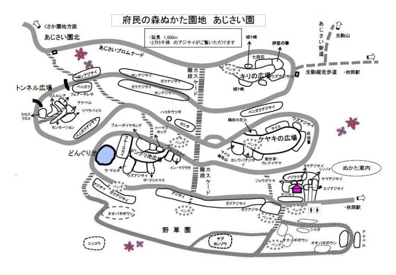 生駒山 ぬかた園地 登山ルート・ハイキングマップ