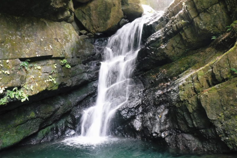 和泉葛城山 渓流・滝 錦流の滝