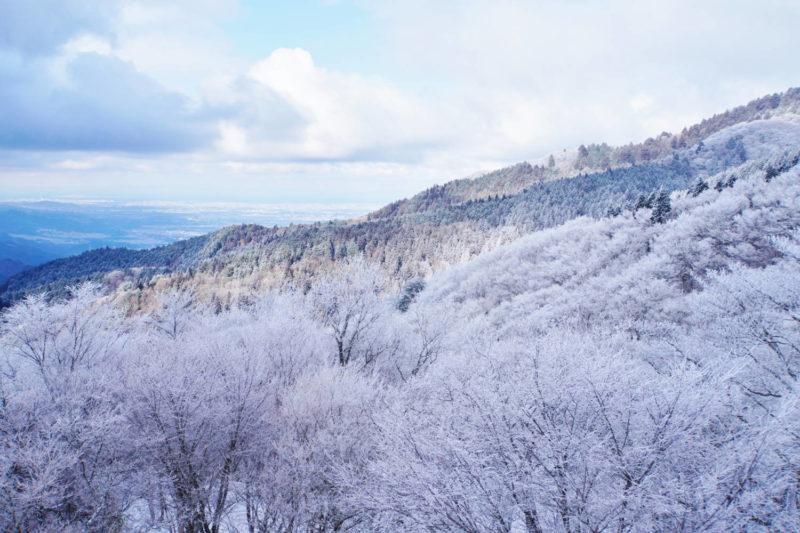 金剛山 雪景色・樹氷・霧氷