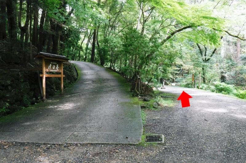 春日山原始林 若草山・鶯の滝