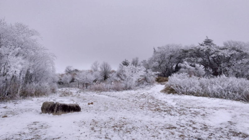 冬の六甲山